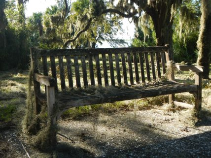 Moss and debris collected around this bench on Jekyll Island, seemingly aging it a hundred years in a matter of hours.